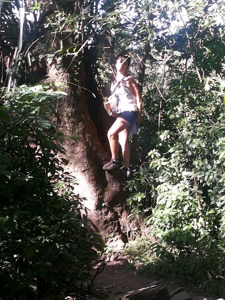 Treeking y Vuelo 2014 (1)